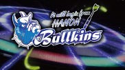 Bullkins